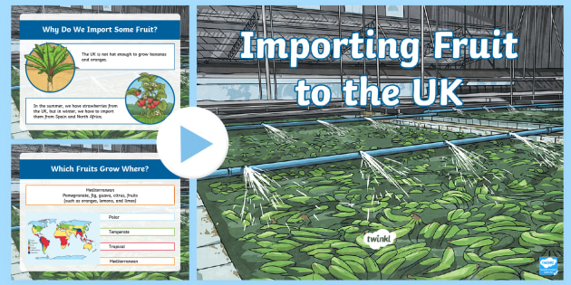 Imports to the UK Lesson Plan - Year 6 Geography