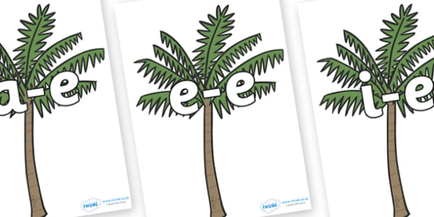 Modifying E Letters on Palm Trees - Modifying E, letters, modify, Phase 5, Phase five, alternative spellings for phonemes, DfES letters and Sounds