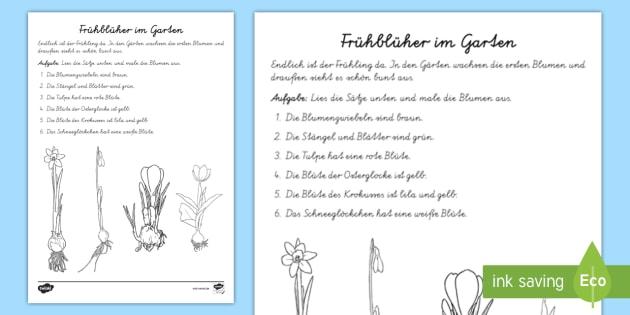 Frühblüher in meinem Garten Arbeitsblatt: Lesen und Malen