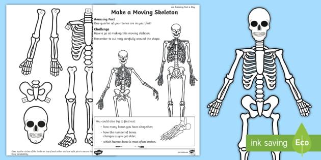A Moving Skeleton Worksheet / Worksheet - amazing fact ...