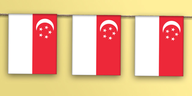 Singapore Flag Display Bunting - countries, geography, display