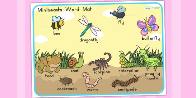 Minibeasts Cute Scene Word Mat - word mats, keywords, keyword mat