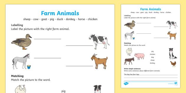 farm animals worksheet worksheet worksheet. Black Bedroom Furniture Sets. Home Design Ideas