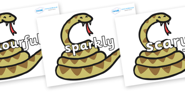 Wow Words on Snakes - Wow words, adjectives, VCOP, describing, Wow, display, poster, wow display, tasty, scary, ugly, beautiful, colourful sharp, bouncy
