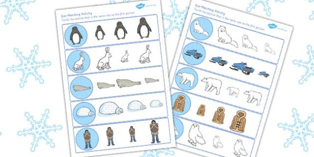 Polar Regions Size Matching Worksheet - polar, matching, sheet
