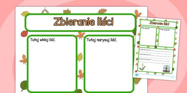 Cwiczenie na pisanie Zbieranie lisci po polsku - szkola , Polish