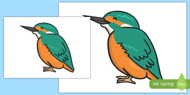 Kingfisher Cut Out - kingfisher, cut out, display, bird, animal, water