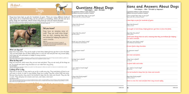 Dogs Reading Comprehension Romanian Translation - romanian, Reading comprehension, dog, find, locate, read, comprehend, fact, title, fact file, information, question