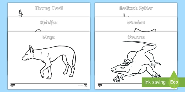Australian Animals Colouring Pages Australian Curriculum Biological