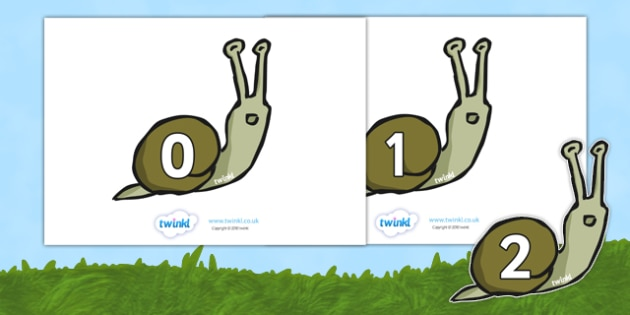 Numbers 0-20 on Snails - Snail, minibeasts, Foundation Numeracy, Number recognition, Number flashcards, Minibeast display