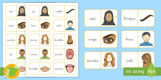 Domino: El cuerpo - cuerpo, salud, proyecto, área temática, transcurricular, juego, vocabulario,Spanish