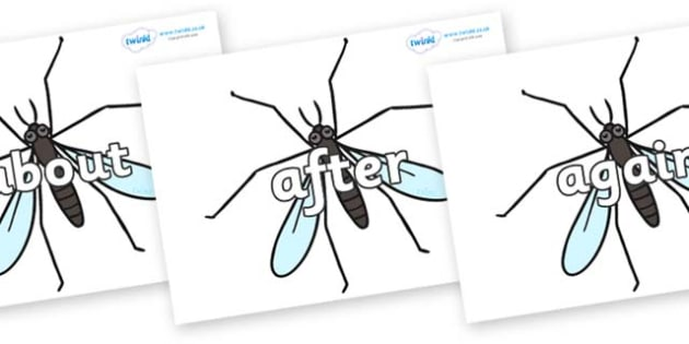 KS1 Keywords on Crane Flies - KS1, CLL, Communication language and literacy, Display, Key words, high frequency words, foundation stage literacy, DfES Letters and Sounds, Letters and Sounds, spelling