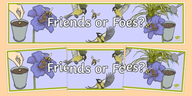 Friends or Foes Display Banner - australia, Australian Curriculum, Friends of Foes?, science, year 4, banner, wall display