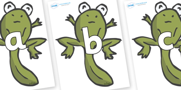 Phoneme Set on Froglets - Phoneme set, phonemes, phoneme, Letters and Sounds, DfES, display, Phase 1, Phase 2, Phase 3, Phase 5, Foundation, Literacy