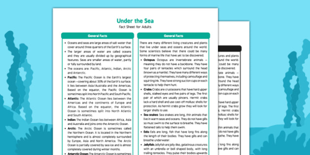 Under the Sea Fact Sheet for Adults - Early Years, KS1, oceans, whale, shark, fish, octopus, sealife