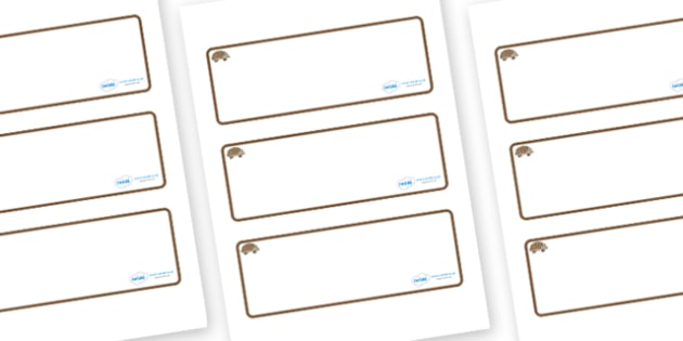 Hedgehog Themed Editable Drawer-Peg-Name Labels (Blank) - Themed Classroom Label Templates, Resource Labels, Name Labels, Editable Labels, Drawer Labels, Coat Peg Labels, Peg Label, KS1 Labels, Foundation Labels, Foundation Stage Labels, Teaching Lab