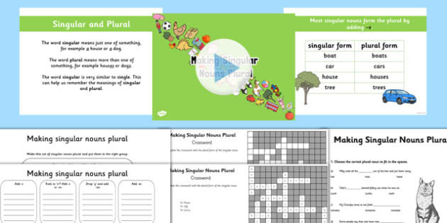 Making Singular Nouns Plural Lesson Teaching Pack - nouns, plural