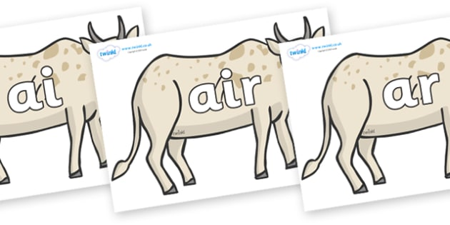 Phase 3 Phonemes on African Ox - Phonemes, phoneme, Phase 3, Phase three, Foundation, Literacy, Letters and Sounds, DfES, display
