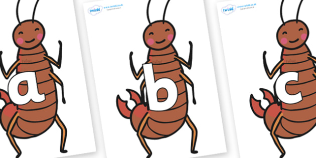 Phoneme Set on Earwigs - Phoneme set, phonemes, phoneme, Letters and Sounds, DfES, display, Phase 1, Phase 2, Phase 3, Phase 5, Foundation, Literacy