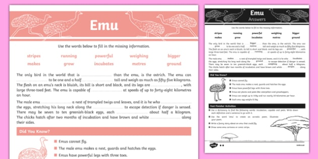 Australian Animals Years 3-6 Emu Differentiated Cloze Passage Activity Sheet - australia, Australian Curriculum, animals, birds, emu, differentiated, cloze, fast finisher, information, reading, worksheet