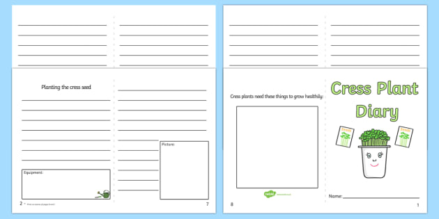 Cress diary writing frame cress diary writing frame write for Diary writing template ks1