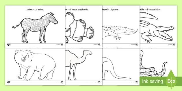Italian English Animsld: Zoo Animals Colouring Pages