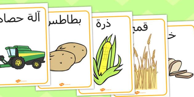 ملصقات عن الحصاد - موسم الحصاد، الحصاد، مورد تعليمي