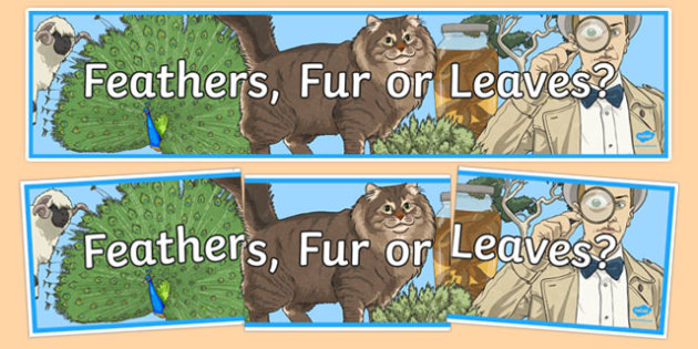 Feathers, Fur or Leaves Display Banner - australia, Australian Curriculum, Feathers, Fur or Leaves, science, year 3, banner, wall display