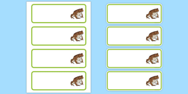 Editbale Toad Peg Labels - add, names, pegs, coats, places, eyfs, ks1, ks2, frogs, amphibians.