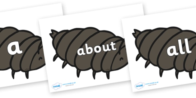 100 High Frequency Words on Woodlice - High frequency words, hfw, DfES Letters and Sounds, Letters and Sounds, display words