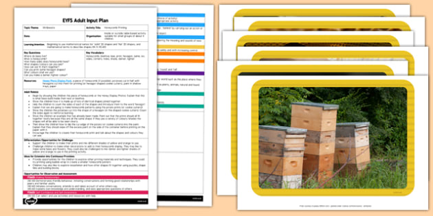 Honeycomb Printing EYFS Adult Input Plan and Resource Pack - lesson plan, plans