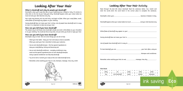 Looking After Your Hair   Dandruff Fact File Activity Sheets