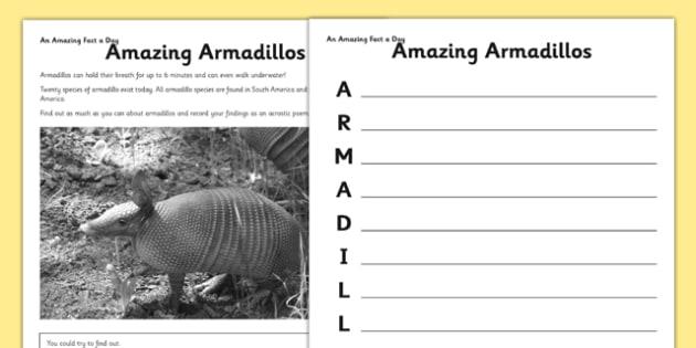 Amazing Armadillos Activity Sheet - armadillo, acrostic, activity sheet, worksheet