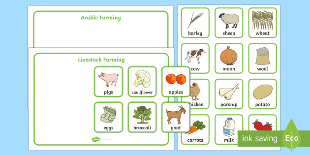 Arable and Livestock Farming Sorting Cards
