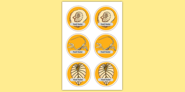 Fossil Hunter Role Play Badges - fossils, dinosaur, history, role