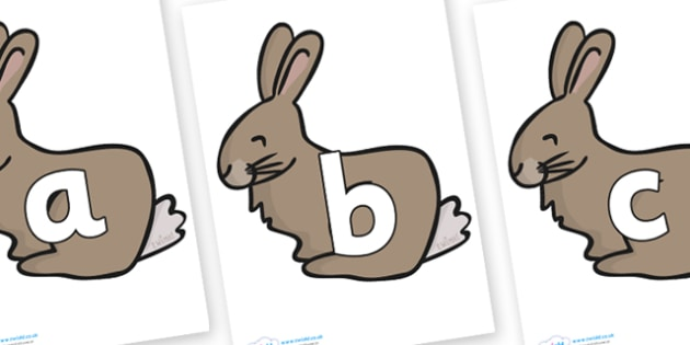 Phoneme Set on Rabbits - Phoneme set, phonemes, phoneme, Letters and Sounds, DfES, display, Phase 1, Phase 2, Phase 3, Phase 5, Foundation, Literacy