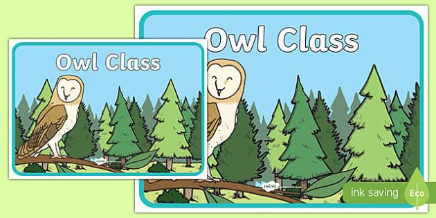 Owl Class Display Poster - owl class, display poster, display, poster, owl, class