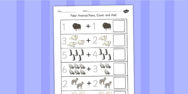 Polar Animals Trace Count and Add Worksheet - Worksheets, Maths