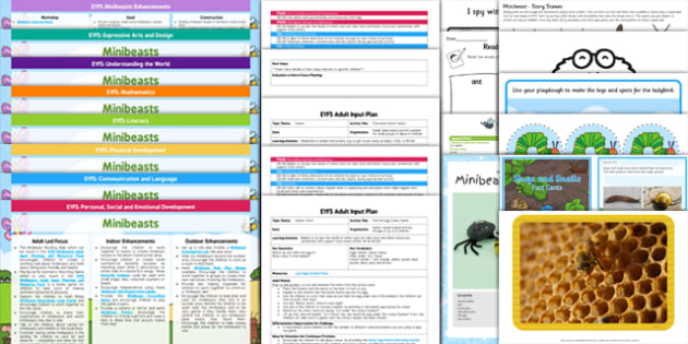 EYFS Minibeasts Lesson Plan Enhancement Ideas and Resources Pack - planning