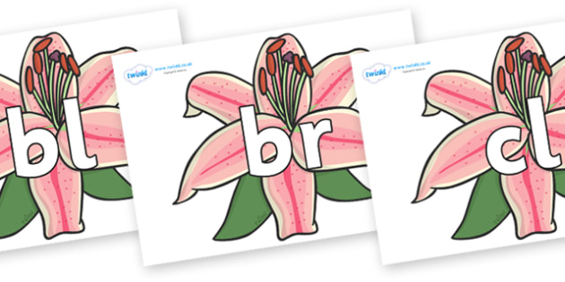 Initial Letter Blends on Lilies - Initial Letters, initial letter, letter blend, letter blends, consonant, consonants, digraph, trigraph, literacy, alphabet, letters, foundation stage literacy