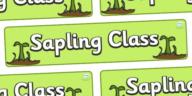 Sapling Class Display Banner - sapling class, growth, class banner, class display,  classroom banner, classroom areas signs, areas, display banner, display