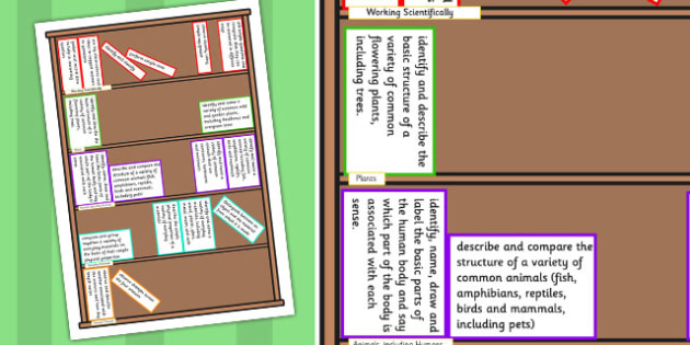 2014 Curriculum Year 1 Science Assessment Targets Colouring