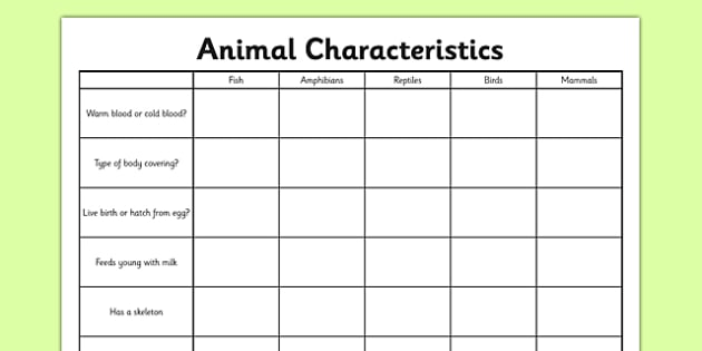 animal characteristics worksheet activity sheet living. Black Bedroom Furniture Sets. Home Design Ideas