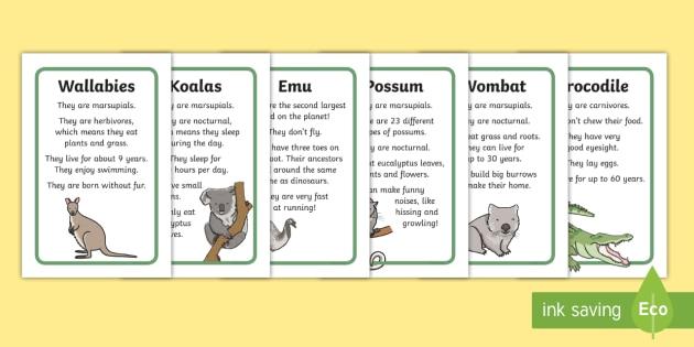 NEW * Australian Animal Facts Prompt Frame - australia