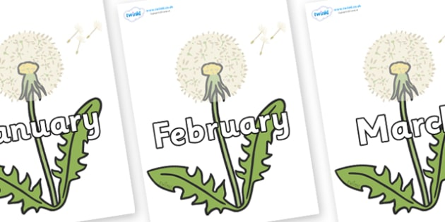 Months of the Year on Dandelion-Seeds - Months of the Year, Months poster, Months display, display, poster, frieze, Months, month, January, February, March, April, May, June, July, August, September