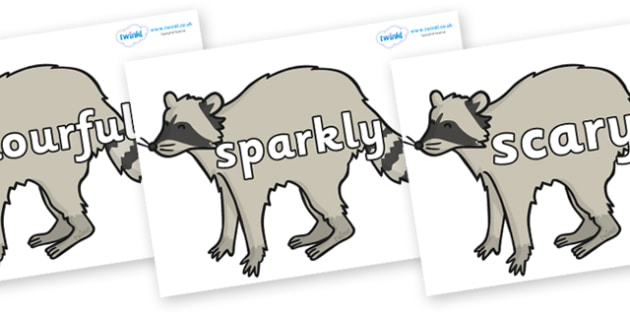 Wow Words on Raccoons - Wow words, adjectives, VCOP, describing, Wow, display, poster, wow display, tasty, scary, ugly, beautiful, colourful sharp, bouncy