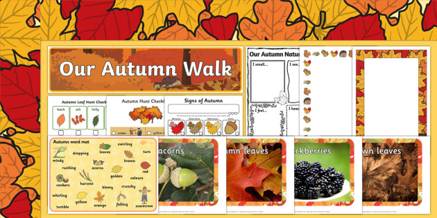 Our Autumn Walk Resource Pack
