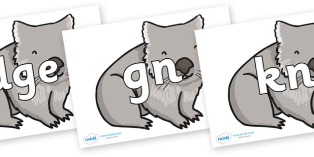 Silent Letters on Wombat - Silent Letters, silent letter, letter blend, consonant, consonants, digraph, trigraph, A-Z letters, literacy, alphabet, letters, alternative sounds