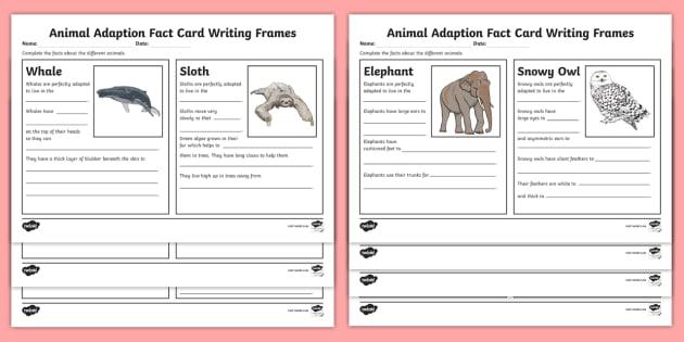 Animal Adaptation Fact Writing Sheets Teacher Made