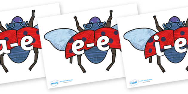 Modifying E Letters on Bad Tempered Ladybird to Support Teaching on The Bad Tempered Ladybird - Modifying E, letters, modify, Phase 5, Phase five, alternative spellings for phonemes, DfES letters and Sounds